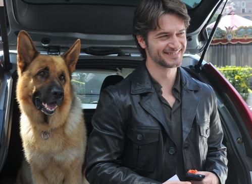 Rex, stasera su RaiDue la quarta serie con Ettore Bassi: intervista e trama – FOTO