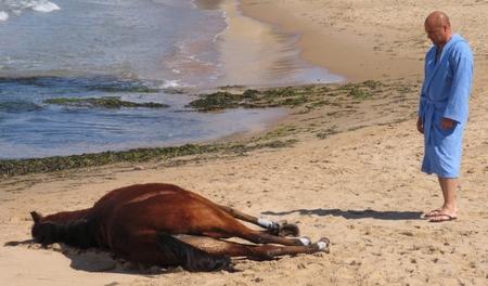 Il Commissario Montalbano, La pista di sabbia stasera su RaiUno: trama