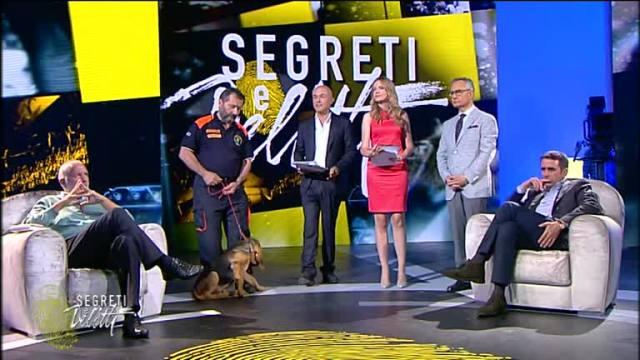 Ascolti Tv, 21 giugno 2014: Flightplan – Mistero in volo a 3,3 mln; Segreti e Delitti a 3,1 mln