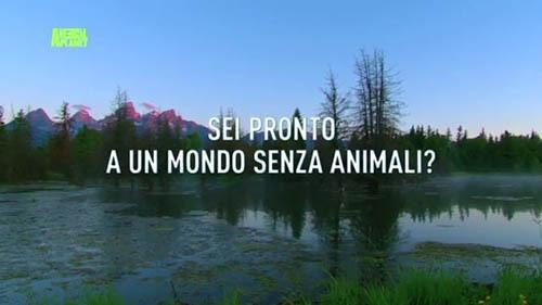 Animal Planet: sabato 21 novembre si spegne per protestare contro l'estinzione delle specie animali