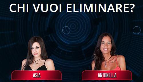 Grande Fratello Vip, anticipazioni 17 ottobre 2016: chi uscirà tra Asia e Antonella Mosetti? Info streaming