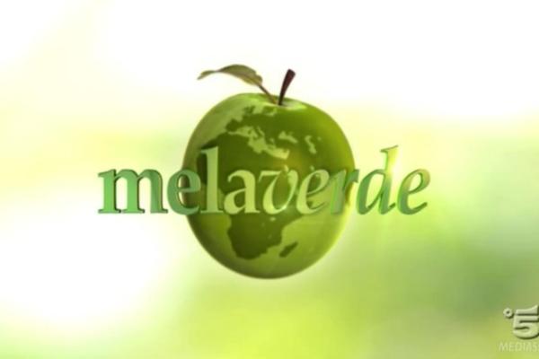 Melaverde, puntata 7 ottobre: Ellen Hidding e Vincenzo Venuto, servizi e info streaming