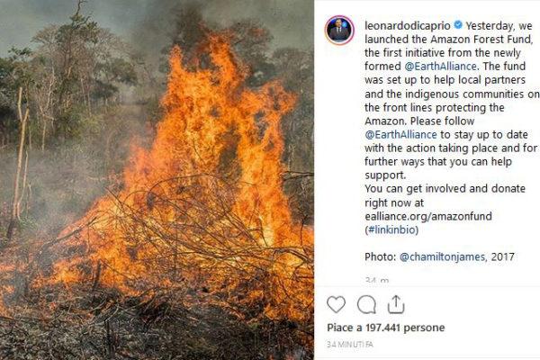 Incendi Amazzonia, Leonardo DiCaprio dona 5 milioni di dollari
